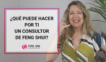 Consultor Profesional Feng Shui