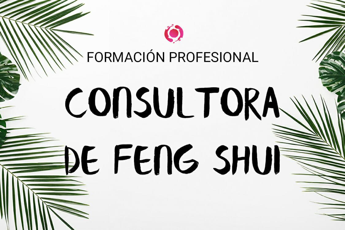 formación profesional consultora de feng shui