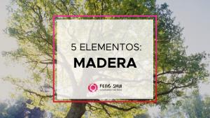 5 elementos: madera